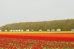 Caravan trip Stock Images