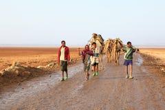 Caravan van kamelen stock foto's