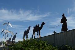 Caravan van kamelen Stock Afbeelding