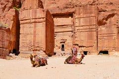 Caravan van Kamelen bij de Oude Graven in Petra, Jordanië royalty-vrije stock afbeeldingen