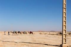 Caravan van kamelen en de transmissielijn Stock Afbeeldingen