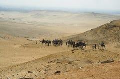 Caravan in woestijn Stock Foto's