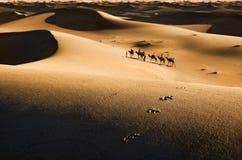 Caravan in woestijn royalty-vrije stock afbeelding