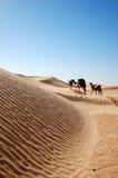 Caravan in woestijn de Sahara Royalty-vrije Stock Afbeeldingen