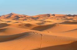 Caravana de camellos en dunas de arena de Chebbi del ergio cerca de Merzouga, Marruecos imagen de archivo libre de regalías