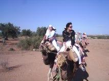 caravana de los camellos imagen de archivo