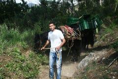 Caravana del burro Fotos de archivo