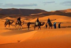 Caravana del camello Imagenes de archivo