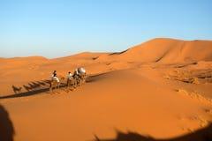 Caravana del camello en el desierto de Sáhara Foto de archivo libre de regalías