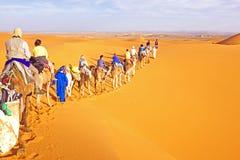 Caravana del camello que pasa a través de las dunas de arena en Sahara Desert Imágenes de archivo libres de regalías