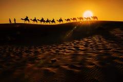 Caravana do camelo Fotografia de Stock