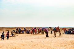 Caravana do camelo em Egito fotos de stock royalty free