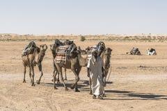 Caravana do camelo no deserto de Sahara Fotografia de Stock