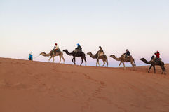 Caravana do camelo no deserto de sahara, Marrocos fotografia de stock