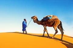 Caravana do camelo que atravessa as dunas de areia em Sahara Desert fotos de stock royalty free