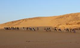 caravana dos camelos imagem de stock
