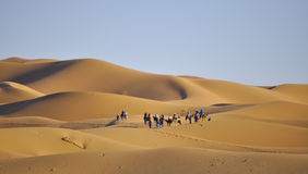 Caravana en las dunas Imágenes de archivo libres de regalías