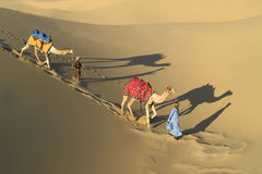 Caravana india 1 del camello Foto de archivo libre de regalías