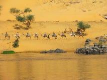 Caravana nas dunas pelo rio de Nile fotografia de stock royalty free