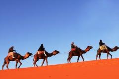 Caravana no deserto foto de stock