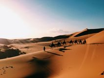 Caravana no deserto de Sahara Foto de Stock Royalty Free