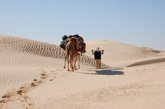 Caravana no deserto Sahara Imagem de Stock