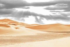 Caravana que atravessa as dunas de areia em Sahara Desert imagens de stock royalty free