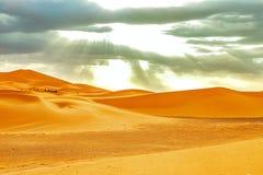 Caravana que pasa a trav?s de las dunas de arena en Sahara Desert fotografía de archivo libre de regalías