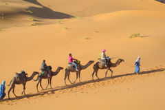 Caravana turística del camello en dunas del desierto de la arena de África Imagen de archivo libre de regalías