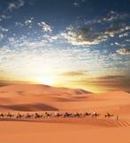Caravane dans le désert photo stock