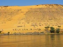 Caravane dans les dunes par le fleuve de Nil Photographie stock libre de droits