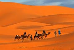 Caravane de chameau Photo libre de droits