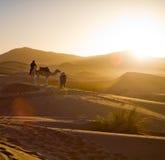 Caravane de chameau dans le désert de Sahara Photographie stock libre de droits