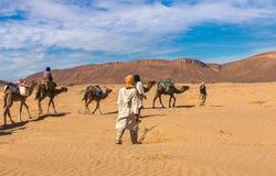 Caravane de chameau passant par le désert, Maroc Image stock