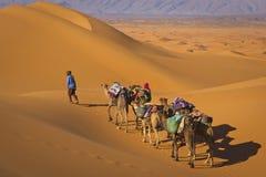 Caravane de désert image stock