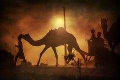 Caravane des chameaux au coucher du soleil dans le désert de sable Photos stock