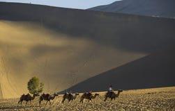 Caravans in woestijn royalty-vrije stock foto's