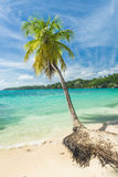 Caravelle beach Royalty Free Stock Images