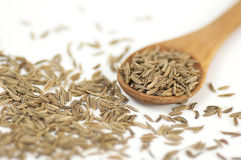 Caraway (Carum carvi) seeds background Royalty Free Stock Image