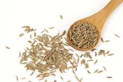 Caraway (Carum carvi) seeds. Close up isolated on white Stock Images