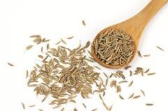 Caraway (Carum carvi) seeds Stock Images