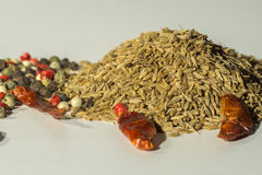 Caraway,cumin, black pepper, allspice, paprika, spices used worldwide. Royalty Free Stock Photo