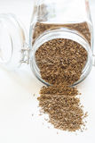 Caraway in jar. Isolated on white background stock photography