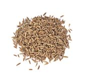 Caraway, meridian fennel, Persian cumin isolated on white backgr royalty free stock photos