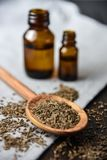 Caraway oil and seeds on wooden spoon and essential oil. Spice Stock Photos
