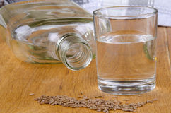 Caraway schnapps in a glass Royalty Free Stock Photos