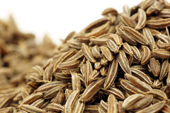 Caraway Seed. Whole caraway seeds, close-up on a white background Royalty Free Stock Photos