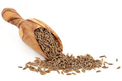 Caraway Seed royalty free stock photo