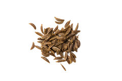 Caraway seed isolated on white, view from above. Royalty Free Stock Photo