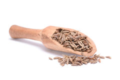 Caraway seed Stock Photo
